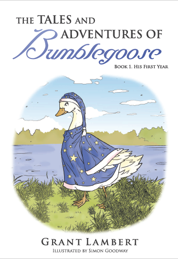 The Tales and Adventures of Bumblegoose